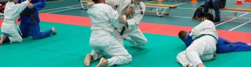 decoratieve foto judo met kinderen met een beperking
