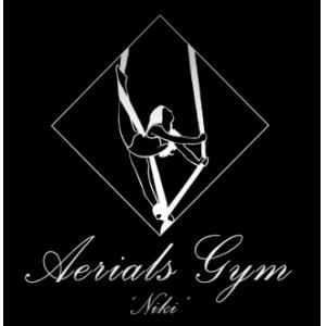 logo aerieals gym 'Niki'